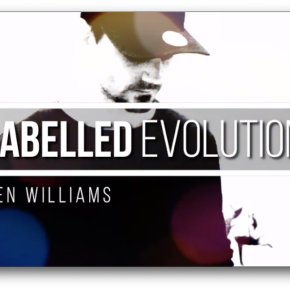 Labelled Evolution by Ben Williams